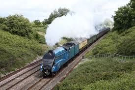 Cathedral Steam Train