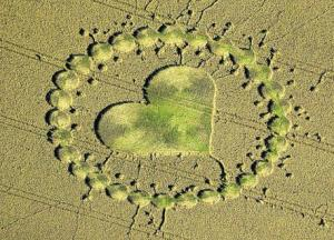 An intricate pattern in a field near Calne in August 2000